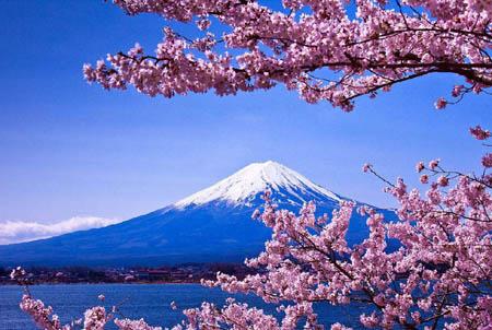 自然志:富士山竟然属于私人所有 而不归政府