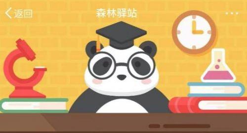 森林驿站9月28日答案 为什么长江江豚妈妈在活动时背上经常驮着宝宝