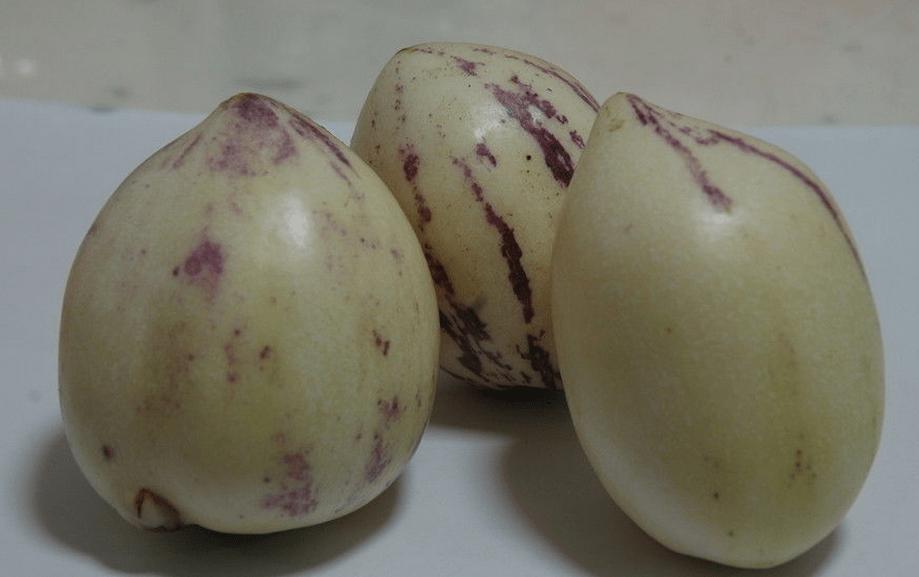 """人参果 又叫香瓜茄,参果确实可以称得上是一种""""仙果"""""""